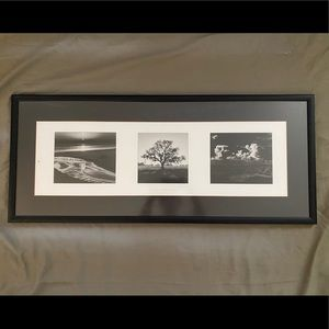 Ansel Adams Prints